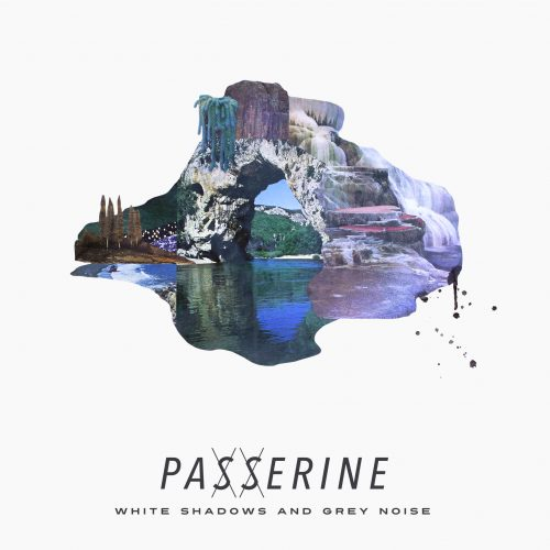 Pick 'n' Mix // Passerine - White Shadows and Grey Noise